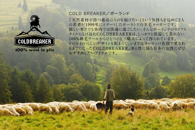 コールドブレーカー(COLDBREAKER)